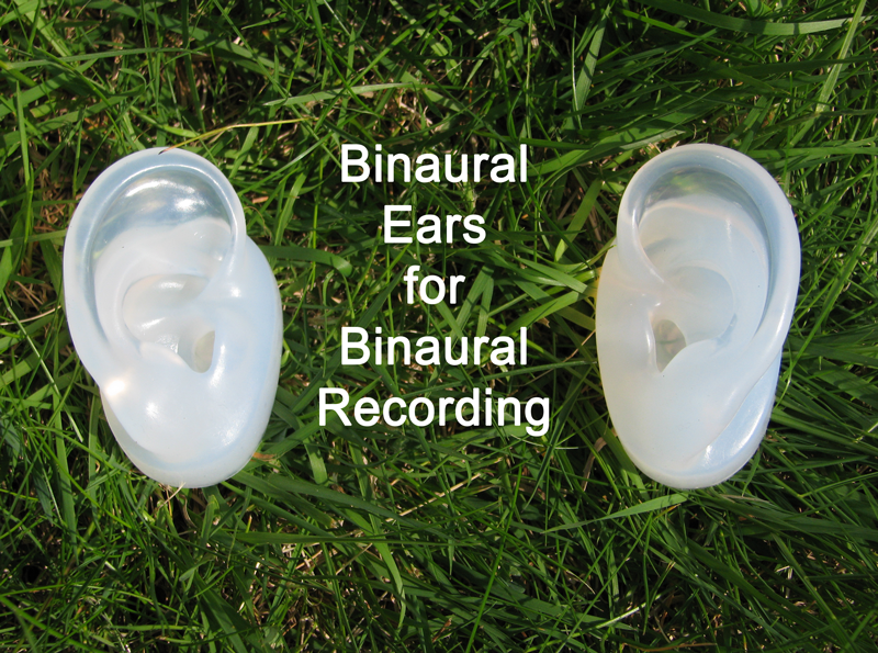 Binaural Ears